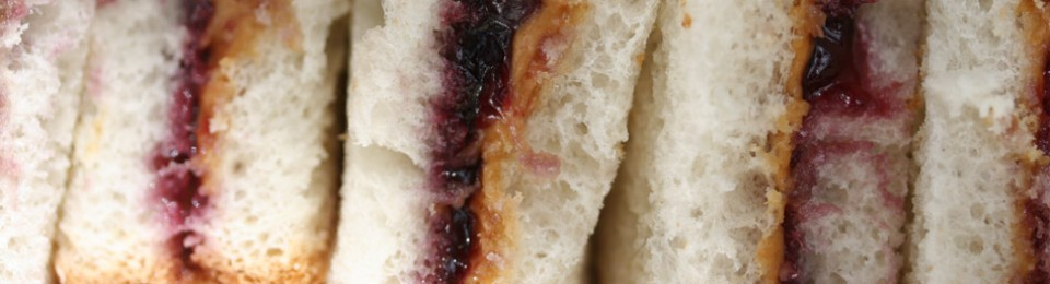 Peanut Jelly Sandwich