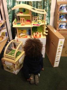 Boy looking at doll house